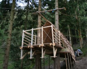 Treehouse Architecture