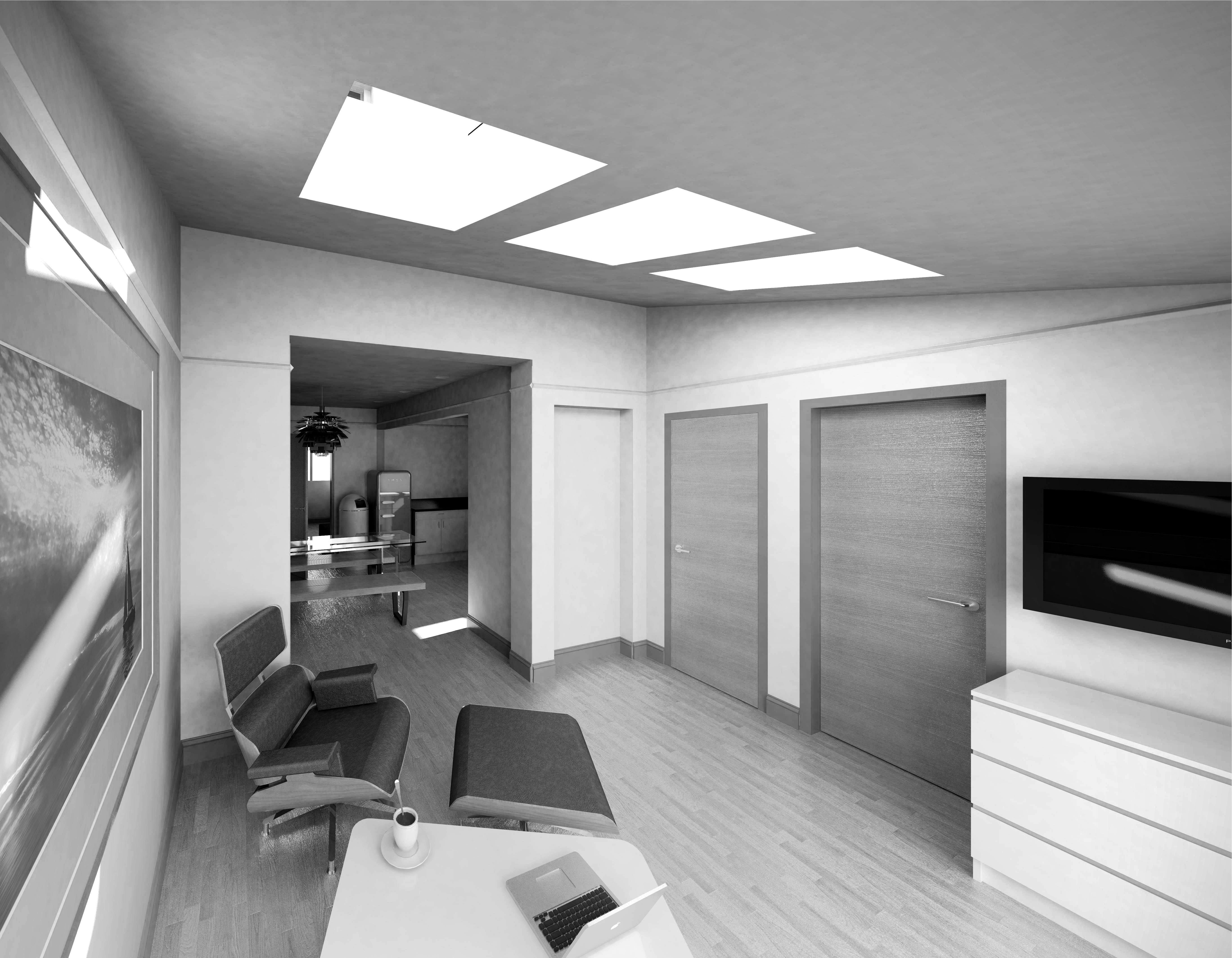 Single Storey Extension and Loft Conversion